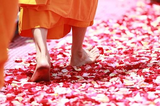 buddhismus 5