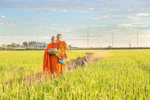 buddhismus 50