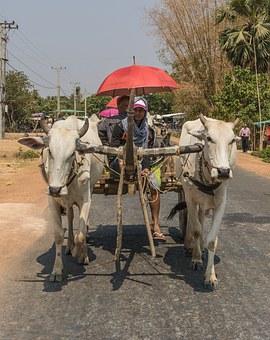 cambodia 143