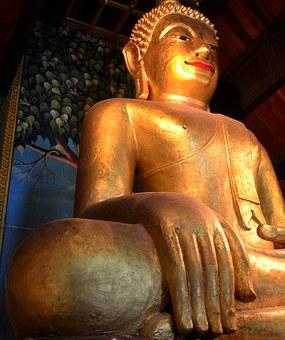 Tempel 65