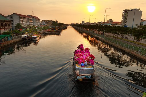 vietnam 49